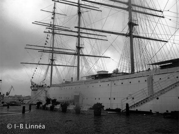 Skeppet viiking