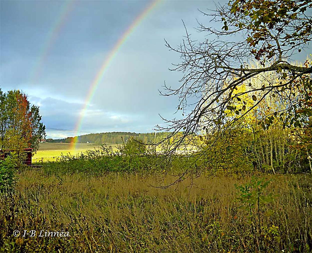 Dubbla regnbågar